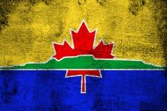 Illustration rouillée et grunge de Thunder Bay de drapeau illustration stock