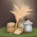 Illustration with rye foodstuff Stock Photo