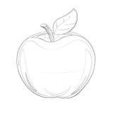 Illustration : Série de livre de coloriage : Apple Ligne mince molle Illustration Libre de Droits