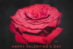 illustration s för hjärta för green för dreamstime för kortdagdesignen stylized valentinvektorn Ferievänner 14th Februari royaltyfri foto