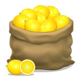 Illustration of a sack of lemons on a white background. Vector Royalty Free Stock Image