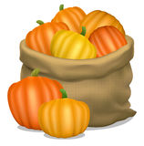 Illustration of a sack of pumpkins on a white background. Vector Royalty Free Stock Photography