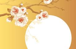 Illustration with Sakura. Illustration Sakura on a gold background with space for text. Vector Oriental cherry tree. Designed to create wedding invitations Stock Photography