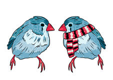 illustration of the same bird warm dressed and undressed Royalty Free Stock Photo