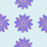 Illustration sans couture d'ornement de fleur Photographie stock libre de droits