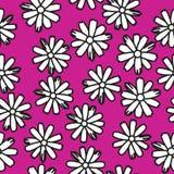 Illustration sans couture de camomille Image stock