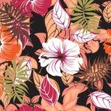 Illustration sans couture de fleur de ressort Image libre de droits
