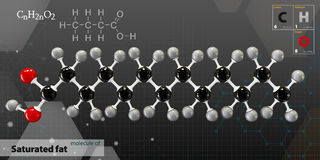 Illustration of saturated fat Molecule isolated gray background. 3d Illustration of saturated fat Molecule isolated gray background Royalty Free Stock Image
