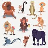 Illustration sauvage animale de vecteur de chimpanzé de singe de zoo de bande dessinée de singe de caractère différent de race Images libres de droits