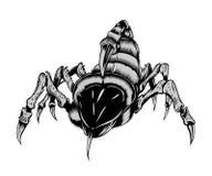 Illustration of scorpion. It is an illustration of creepy scorpion Royalty Free Stock Photos
