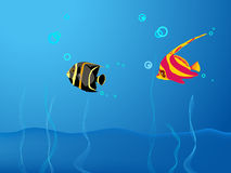 Illustration sea-bottom scene. Illustration of sea-bottom scene with colorful fish Royalty Free Stock Image