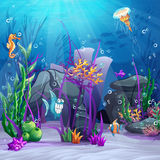 Illustration of the seabed with rocks, algae, barnacles Stock Image