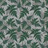 Seamless fern pattern. Illustration of seamless floral pattern with fern branches Royalty Free Stock Photo