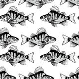 Illustration of seamless pattern with black fish. Stock Photography