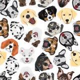 Illustration seamless Pattern Dogs Stock Photography