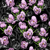 Illustration of seamless pattern First Snowdrops Galanthus Flowers. Spring background, wallpaper and printable Stock Photography