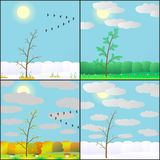 Illustration of seasons in forest. Royalty Free Stock Images