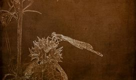 Illustration in Sepia of a  Macro of Famiiar Bluet Enallagma civile Resting on a Dried Thistle Flower. Head stock photos