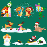 Illustration set animals winter holiday North Pole penguins presents and sledding down the hills Royalty Free Stock Image