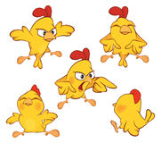 Illustration of a set of cute cartoon yellow chickens Stock Images