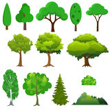 Illustration of a set different trees Stock Photography