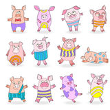 Illustration with Set of funny colored pigs on a white background  Royalty Free Stock Photos