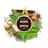 Illustration Of Set With Herbs And Spices vector illustration