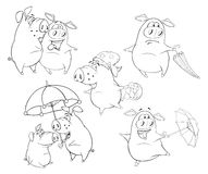 Illustration Set of Pigs .Coloring book Royalty Free Stock Images