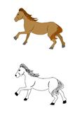 The horse set. The illustration - set of silhouettes of beautiful horses Royalty Free Stock Photo