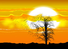 Illustration of several silhouette of a tree under an African sun and clouds. A strong wind breaking branches. Stock Image