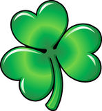Illustration of Shamrock clover Stock Photos