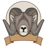 Illustration of a sheep with horns Stock Photography