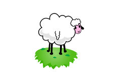 Illustration of sheep. Vector Stock Image