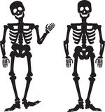 Illustration of the silhouette of a human skeleton Stock Photos