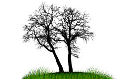 Illustration silhouettes of trees Royalty Free Stock Photo