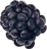 Illustration with single blackberry isolated on white Stock Photo
