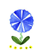 Illustration single flower blue and yellow fairy. On a white background Royalty Free Stock Photography