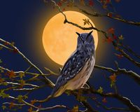 Illustration of a sitting owl on the background of the moon royalty free illustration