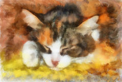 Illustration, sleeping cat Stock Photo