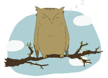 Illustration of a sleeping owl Stock Images