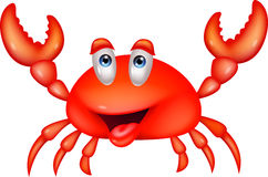 Smiling crab cartoon Stock Photos