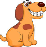 Smiling dog cartoon Royalty Free Stock Photography