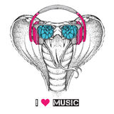 Illustration of snake hipster dressed up in the glasses and headphones. Vector illustration. Royalty Free Stock Image