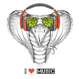Illustration of snake hipster dressed up in the glasses and headphones. Vector illustration. Royalty Free Stock Photos