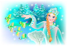 Illustration of Snow queen with birds. Royalty Free Stock Photography