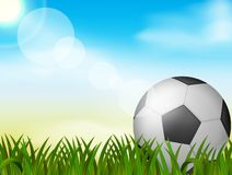 Soccer ball on green grass background stock illustration