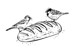 Illustration of the sparrows and bread Royalty Free Stock Photos