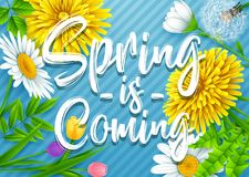 Spring is coming. Spring wording with various flowers on striped blue background. Illustration of Spring is coming. Spring wording with various flowers on Royalty Free Stock Photos