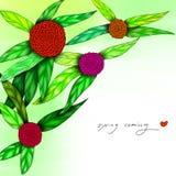 Illustration of spring flower Stock Image