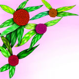 Illustration of spring flower Stock Images
